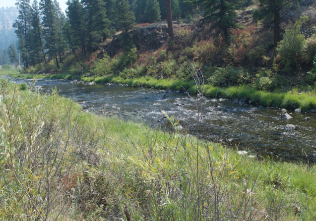 20 Acre Gold Mining Claim Placer Oregon Grant County  - $910.00