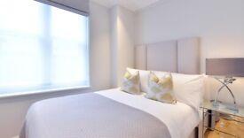 New One bedroom flat in HydePark/Regents Street