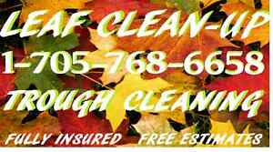 LAWN CARE  Matt's Property Maintenance  EVERYTHING YOU NEED Kawartha Lakes Peterborough Area image 2