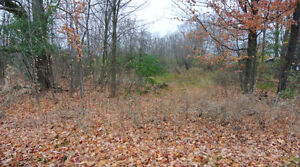 Residential Lot, $45,000. Victoria County - Blanchards Rd