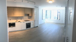 Brand New-1BR 1Den 1Solarium - 11th flr w/ storage and parking