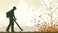 Gardener Available For Fall Cleanups