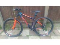Ltd edition carerra bike