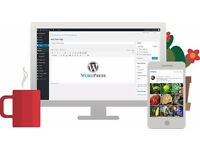 Professional looking WordPress Website at an affordable price