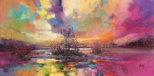 Soft Evening Rays' by Scott Naismith Painting Print on Wrapped Canvas