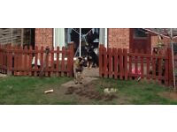 wooden fence and gate 89cm high