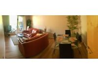 Large Ensuite Room in a lovely, modern 2 bed flat