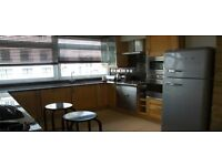 High Standard 2 Bedroom 2 Bathroom Apartment in Marylebone