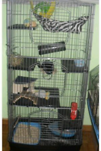 Cage de chinchilla