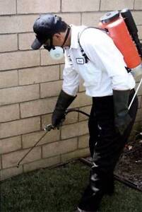 Affordable Pest Control Perth Perth City Area Preview