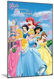 Disney Princess Castle Movie Poster Mounted on Wood - $18