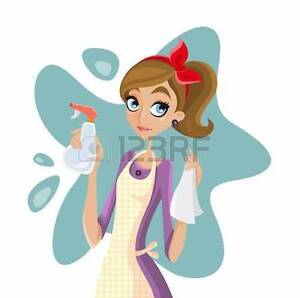 Housekeeping for You Stirling Stirling Area Preview