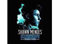 2 Tickets Shawn Mendes 2/06 Section 111
