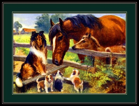 English Picture Print Collie Dog Puppy Dogs Horses Horse Vintage Poster Art