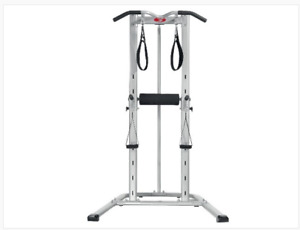 Bowflex Body Tower chin up pull up dips machine