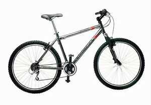 Looking for a bike