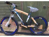 Kawasaki mountain bikes