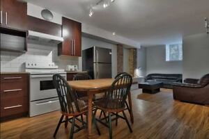 Newly renovated Mcgill adjacent 3BR furnished
