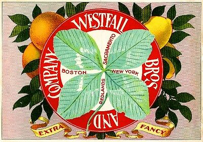 Redlands Irish Ireland Shamrock Orange Lemon Citrus Fruit Crate Label Art Print