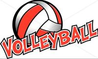 Looking for a ladies volleyball league