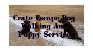 Crate Escape Dog Walking and Puppy Service