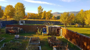 RELOCATE! AFFORDABLE and RENOVATED house on HUGE lot in Merritt!