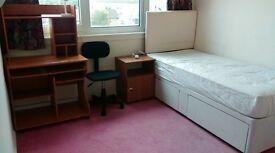 Single room available (female)