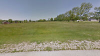 Vacant commercial land in Belgrave