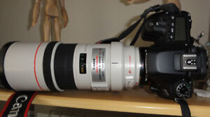 Used Canon 80 D (EOS)