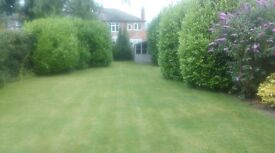 Ged the Gardener Garden Maintenance (Trafford)
