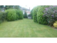 Ged the Gardener Garden Maintenance (Trafford)