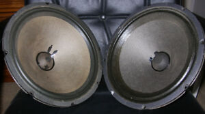 Vintage Alnico Guitar Amp Speakers