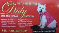 Salon Toilettage Dolly
