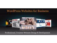 free website design for non-profit organisation/web design/ computer repair / SEO / digital graphic