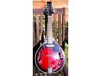 Antoria electro-acoustic mandolin