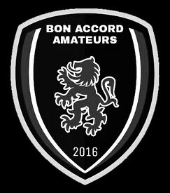 Sunday morning amateur team looking for players