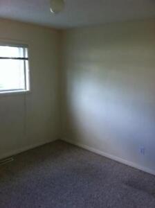 1 Bedroom Lower Level Suite - DECEMBER RENT FREE - $875 Edmonton Edmonton Area image 3