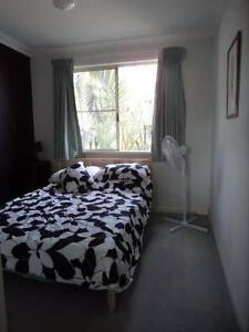 TWO rooms in Victoria Park - near the City - CLEAN Victoria Park Victoria Park Area Preview