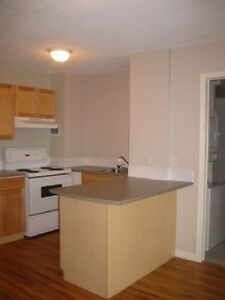1 Bd w/ Laundry & Dishwasher~Utilities Included~Residence
