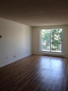 Kingston 2 Bedroom Apartment for Rent close to Memorial Centre
