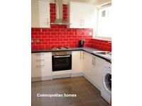 ALDGATE EAST/BRICKLANE, E1, NEWLY DECORATED 3 DOUBLE BEDROOM HOUSE