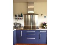 Screwfix Stainless Steel splashback 750 x 900