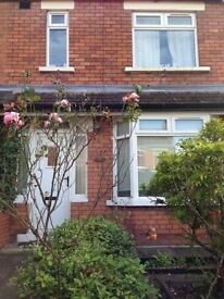 Room to rent in shared house off Ormeau Road