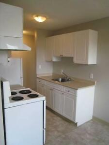 Cheap Apartments --NEAR Downtown & Ice District