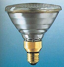 PAR38 ES 240V 120W E27 Flood lamps 10