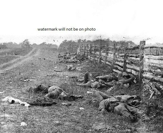 "Dead Confederate Soldiers Battle of Antietam 8""x 10"" Civil War Photo Picture 107"