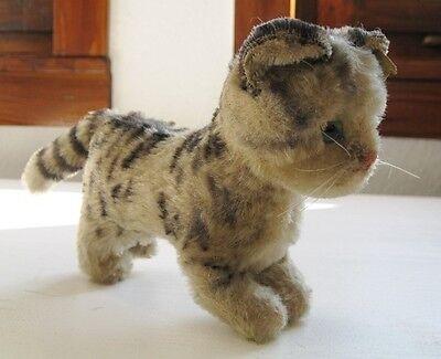 Katze Tabby von Steiff