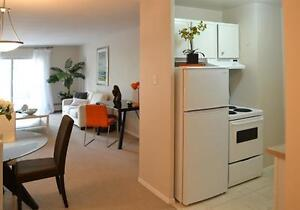 Downtown AND Surrounded by Nature! Spacious-Upgraded! London Ontario image 2