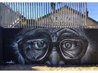 Professional Graffiti Artist