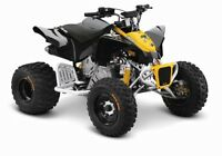 2016 Can-Am DS 90 X 2x4